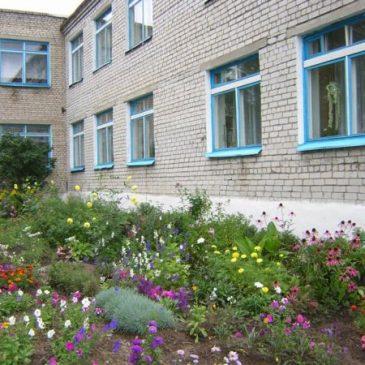 Сельская библиотека №36 д. Турец-Бояры